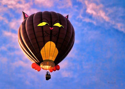坐一次热气球多少钱?坐热气球危险大吗?