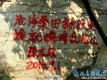 陈志成涂鸦事件怎么处理的?陈志成事件背后的反思!