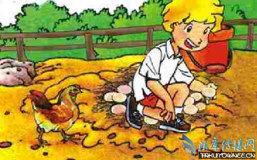 爱迪生孵化小鸡的故事是怎么回事?爱迪生为什么没有孵化出小鸡?