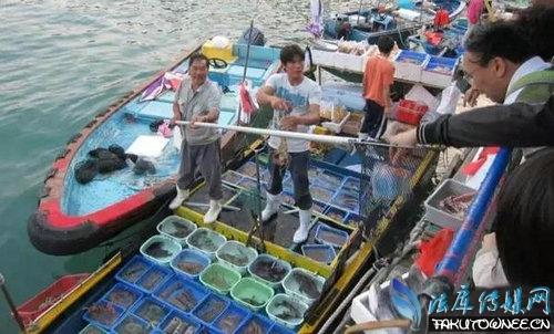 广东人真的吃猫肉吗?广东人为什么什么都敢吃?