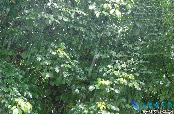 出太阳的时候为什么会下雨?雨是怎么样形成的?