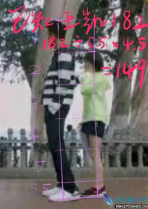 王子文身高有多高?王子文老公刘乐个人资料照片