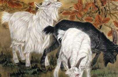 相亲为什么都不要属羊的?古人为什么要发明属相?