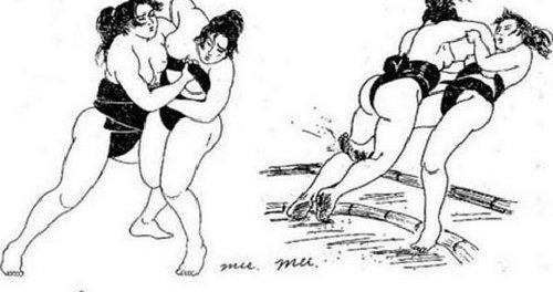 揭秘日本最私密的女子相扑运动,日本相扑手的平均寿命很低吗?