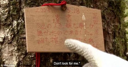 富士山自杀森林每年发现百具尸体是真的吗?为什么人要去自杀森林自杀?