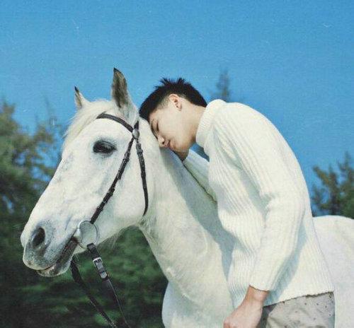 王子为什么骑的是白马?女人为什么会幻想白马王子?