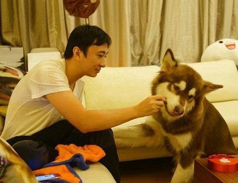 王可可是谁家的狗?王可可是什么品种的狗?