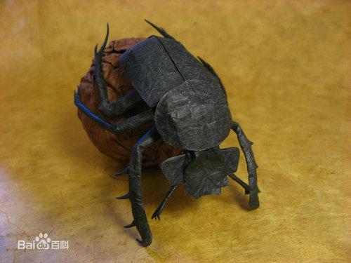 世界上力量最强昆虫是什么品种?昆虫的品种一共有多少种?