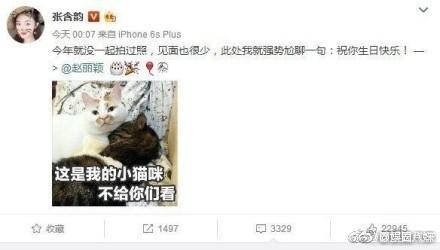 张含韵送赵丽颖生日祝福为什么被喷?网红表情包猫楼楼几岁去世的?