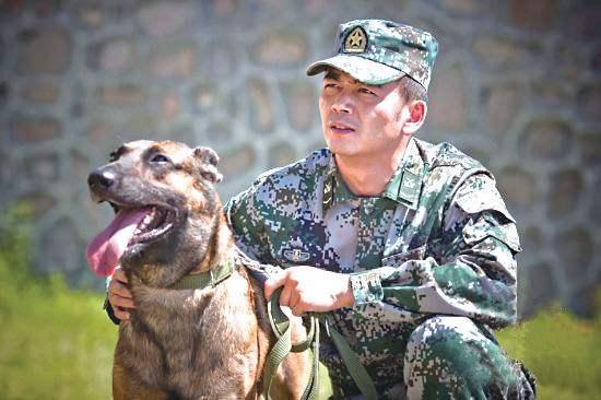 奇兵神犬是真正男子汉第三季?奇兵神犬中明星们的工作犬分别是什么品种?