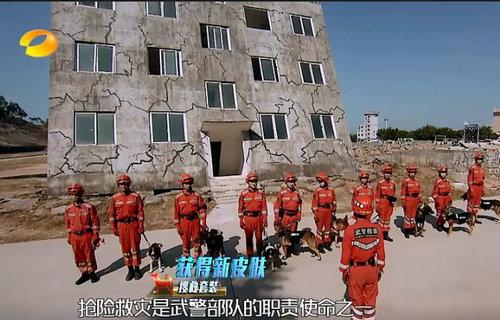 神犬奇兵中的斜房子在哪里?斜房子对于搜救犬有什么训练作用?