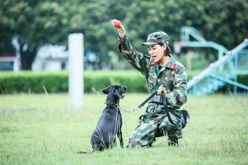 奇兵神犬中的杨朵兰是干什么的?杨朵兰个人资料介绍