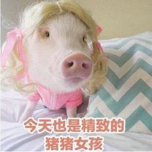 做一个精致的猪猪女孩是什么梗?猪猪女孩是什么样的女孩?