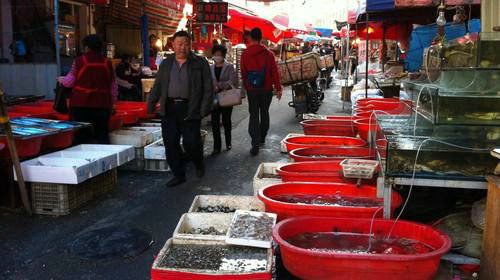 青岛一共有多少人口?青岛本地人都去哪吃海鲜?