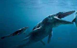 史前的生物为什么体格大?史前最厉害的生物是什么?