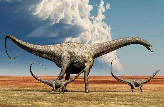 易碎双腔龙是最大的恐龙吗 易碎双腔龙有没有天敌