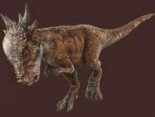 肿头龙是食草的恐龙吗 肿头龙的头有多硬