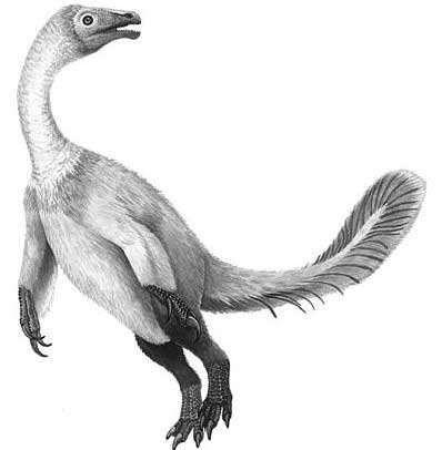 最小的恐龙是什么品种的恐龙 最小的恐龙有多大