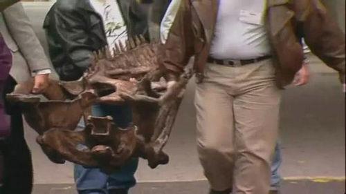 巨兽龙有多大 巨兽龙和霸王龙谁更厉害