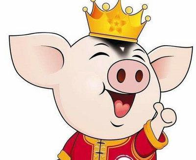 猪年生宝宝的多吗 中国人为什么喜欢属猪的宝宝