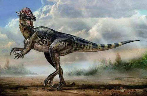 恐龙的智商有多高 恐龙为什么没有进化出智慧文明