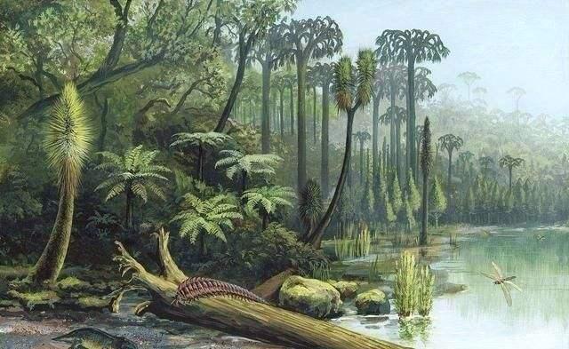 远古时期地球含氧量是多少 地球含氧量为什么下降了