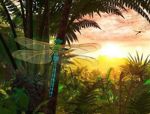 蜻蜓在世界上存活了多少年了 远古时期的蜻蜓有多大
