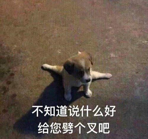 手动狗头是什么意思 手动狗头和手动滑稽的含义