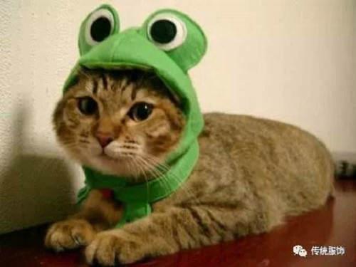 绿帽子的梗是哪时候开始流行的 绿帽子为什么寓意出轨