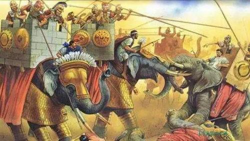 古代大象兵种真的存在吗 大象兵有多厉害