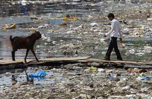 印度人吃饭环境为什么那么脏 印度脏乱差的原因