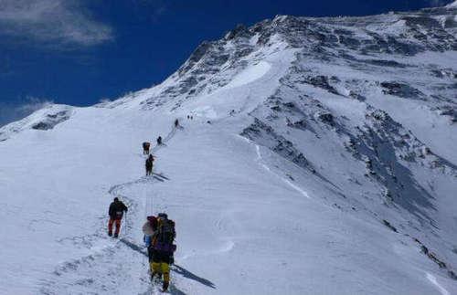珠峰上有动物生存吗 珠峰顶端的温度是多少