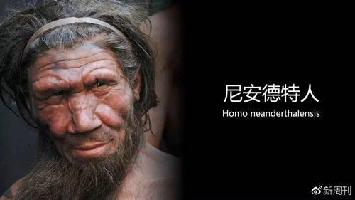 尼安德特人是什么人 尼安德特人灭绝的原因