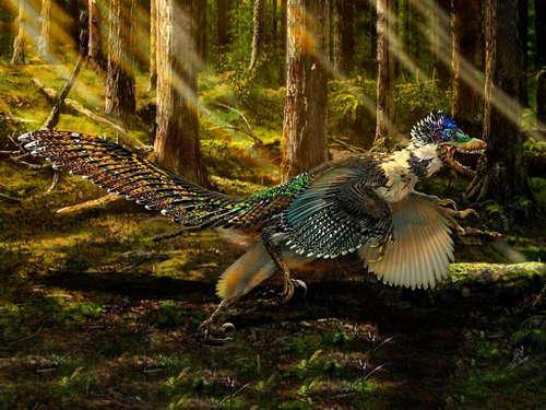 蜥蜴和恐龙是近亲吗 蜥蜴是恐龙时代的生物吗