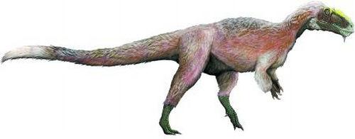 恐龙身上有羽毛吗 恐龙进化成鸟类是真的吗