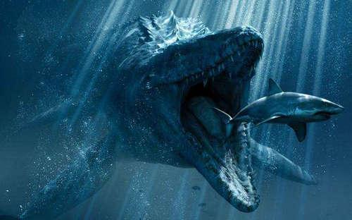 沧龙是哺乳动物吗 沧龙能吃霸王龙吗