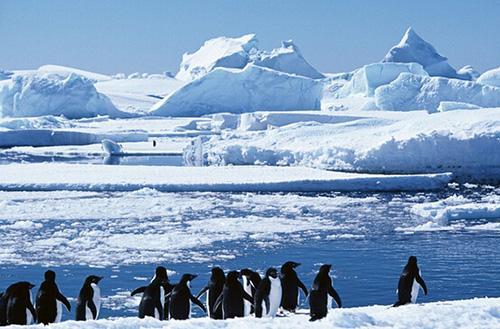 南北极冰川是淡水吗 南北极冰川如何形成的