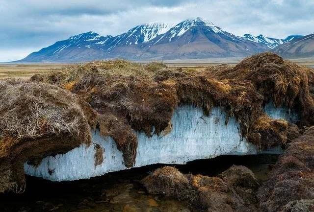 冰川融化会释放病毒吗 真的会有超级病毒吗