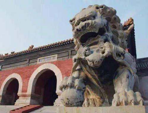 古代有狮子吗 古代狮子是怎么运到中国的