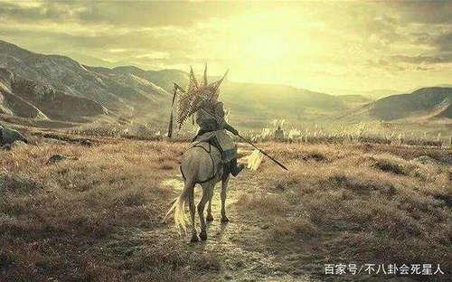 八佰中的白马是什么意思 白马代表什么