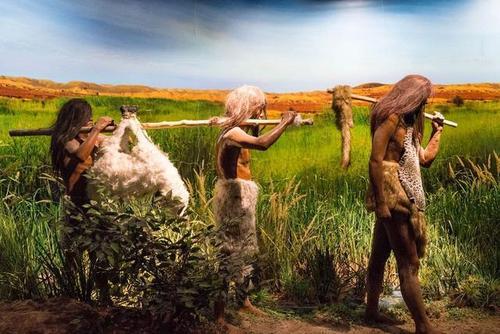 原始人靠什么补充盐分 原始人盐是怎么获取的