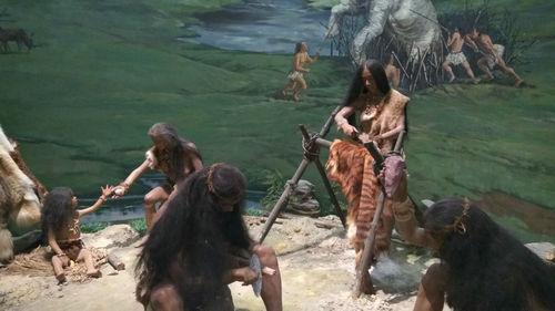 原始人族群一般多少人 族群之间会发生战争吗