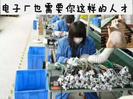 电子厂上班是什么梗 找个电子厂上班是什么意思