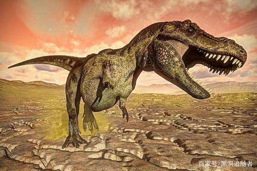 恐龙的智商相当于人类的几岁 恐龙为什么智商不高