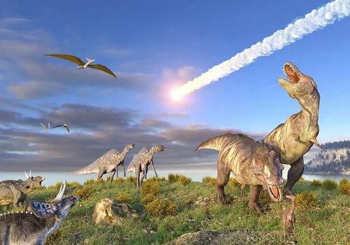 恐龙是一夜之间灭绝的吗 恐龙灭绝的真实情况